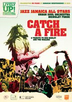 Catch_a_fire_flyer_front-min-tiny
